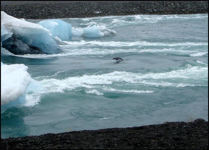 Voyage Islande ; le pays de la glace et du feu dans le cercle polaire Arctique 34