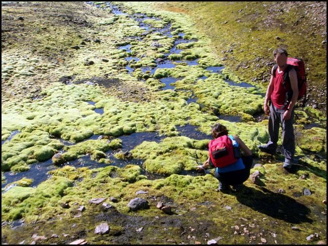 Voyage Islande ; le pays de la glace et du feu dans le cercle polaire Arctique 20