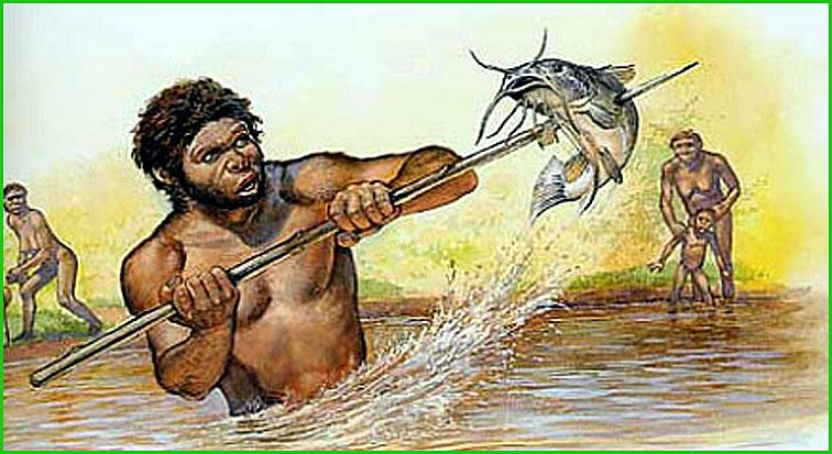 What Food Did Homo Sapiens Eat