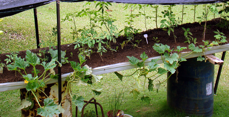 jardin suspendu argoul. Black Bedroom Furniture Sets. Home Design Ideas