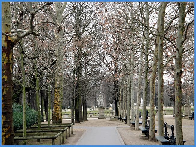 Paris luxembourg bois hiver argoul for Entretien du jardin en hiver