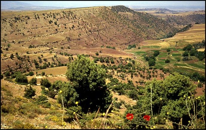 Randonnée dans le Haut Atlas central ; rencontre avec les Berbères au Maroc 6