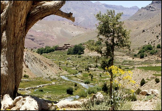 Randonnée dans le Haut Atlas central ; rencontre avec les Berbères au Maroc 45