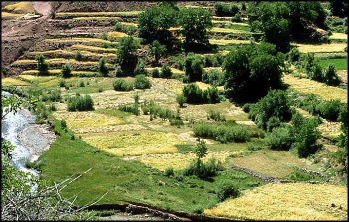Randonnée dans le Haut Atlas central ; rencontre avec les Berbères au Maroc 4