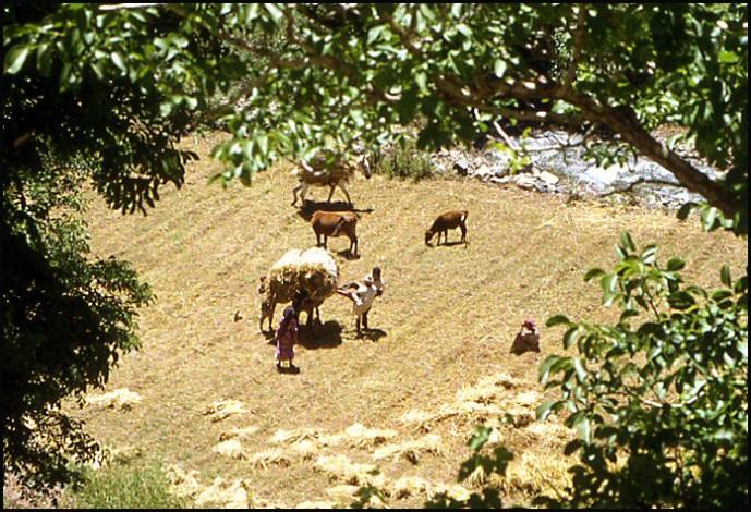 Randonnée dans le Haut Atlas central ; rencontre avec les Berbères au Maroc 21