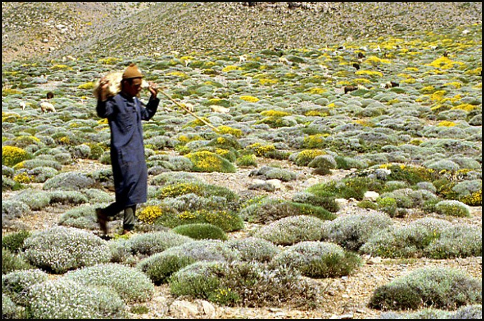 Randonnée dans le Haut Atlas central ; rencontre avec les Berbères au Maroc 39