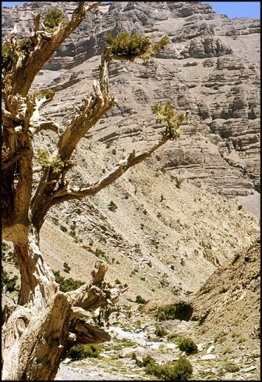 Randonnée dans le Haut Atlas central ; rencontre avec les Berbères au Maroc 52