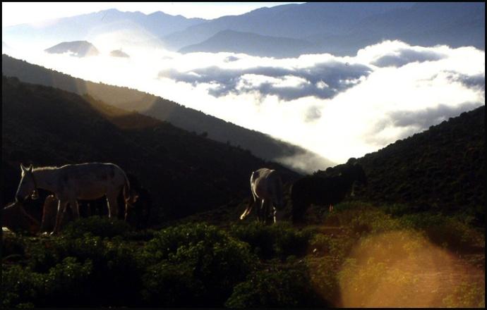 Randonnée dans le Haut Atlas central ; rencontre avec les Berbères au Maroc 15