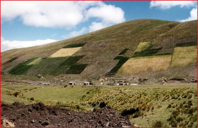 Équateur et Iles Galapagos ; oriente, sierra, jungle et volcans, un kaléidoscope entre 2 hémisphères 7