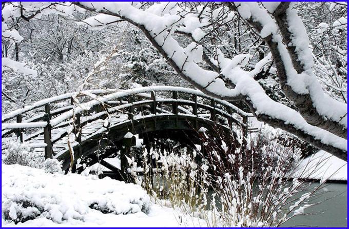neige japon