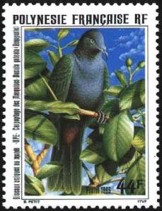 pigeon sur timbre