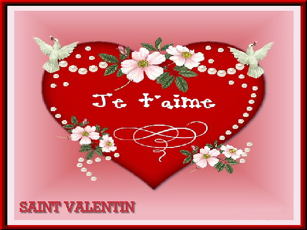 saint valentin carte rose