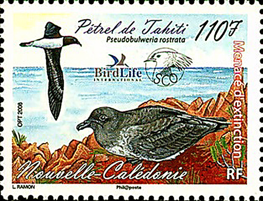 timbre petrel de tahiti