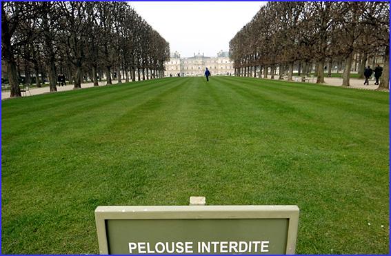 Paris senat jardin du luxembourg