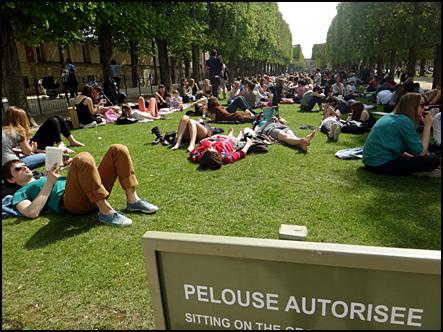 pelouse printemps Paris luxembourg