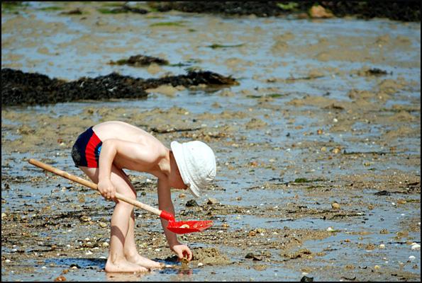 gamin en slip cherche coquillages