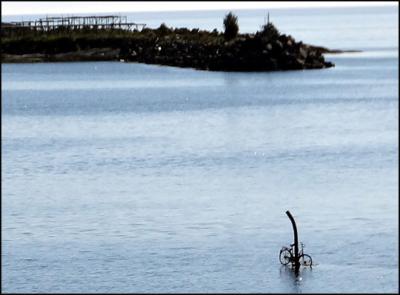 velo sur l eau moskenes Lofoten