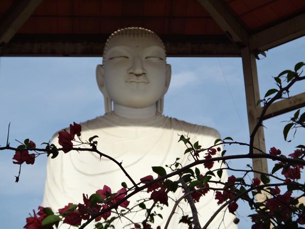 bouddha blanc Anuradhapura sri lanka