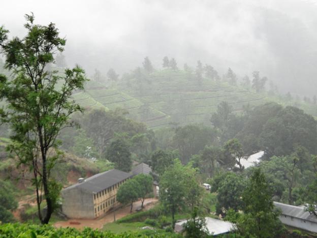 fabrique de the sous la pluie sri lanka
