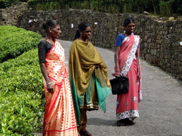 femmes tamoul haputale sri lanka
