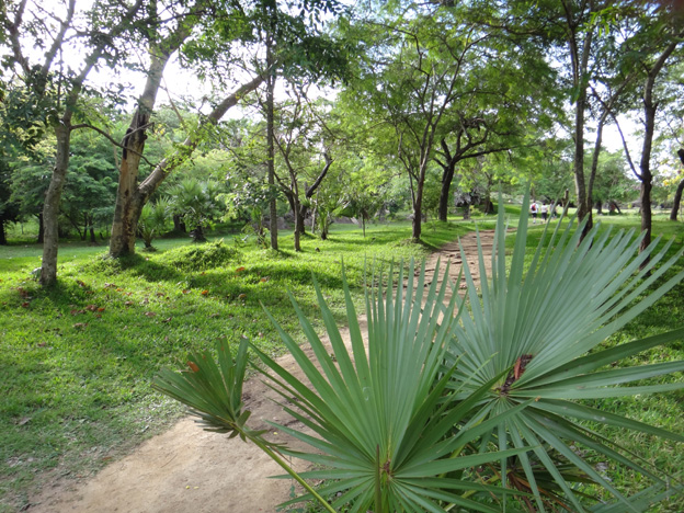 jardin Anuradhapura sri lanka