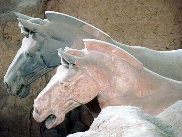 xian chevaux