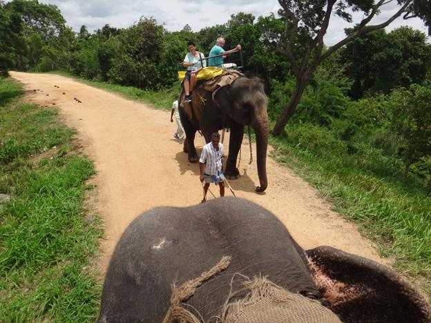 elephant promenade sri kanka