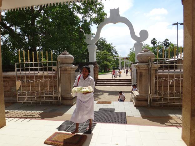 temple Sri Maha Bodhi Anuradhapura sri lanka