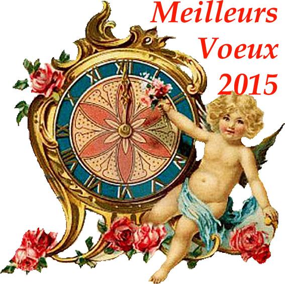 argoul voeux 2015