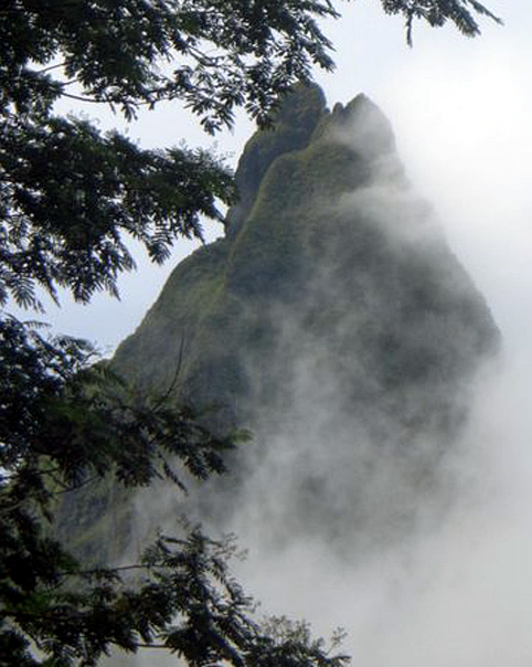 montagne brume tahiti