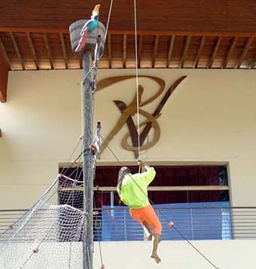puerto vallarta acrobatie