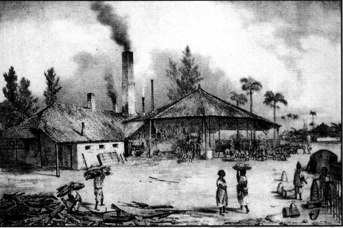 distillerie 19eme cuba