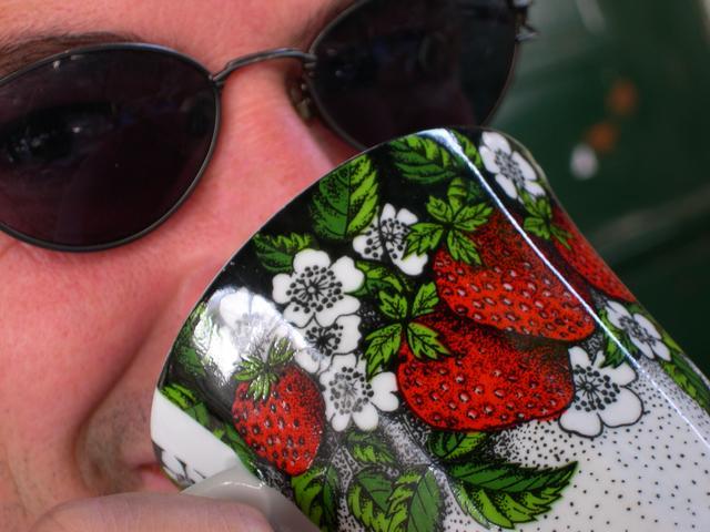 fraise des bois photo