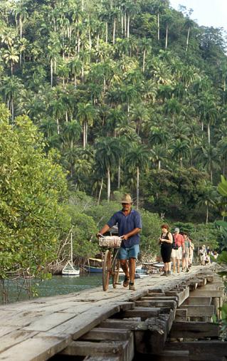 pont dans la selva cuba