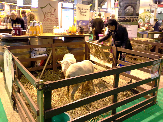 salon destinations nature 2015 2 moutons