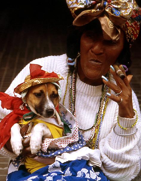 la havane vieille au chien et au cigare