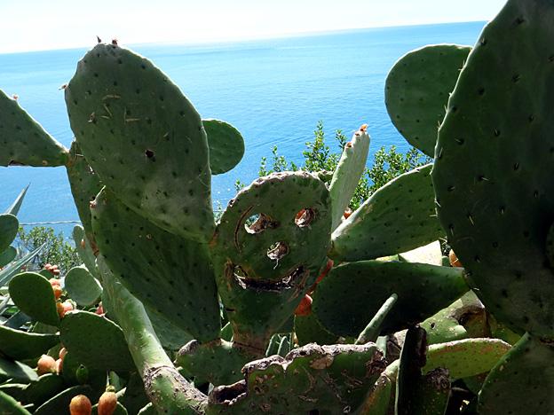 cactus sculpte