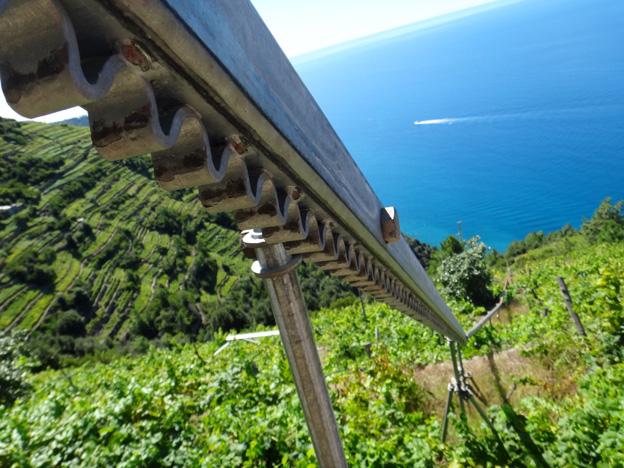 corniglia rails pour vendanges