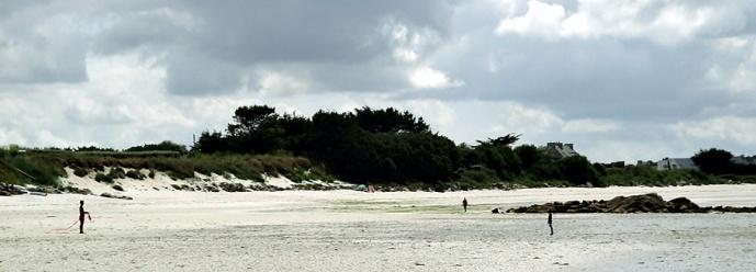 cerf volant plage dossen
