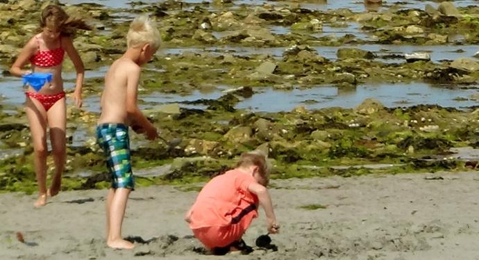 enfants dans les algues