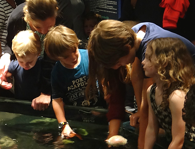 enfants oceanopolis