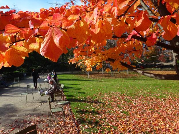 automne paris luxembourg
