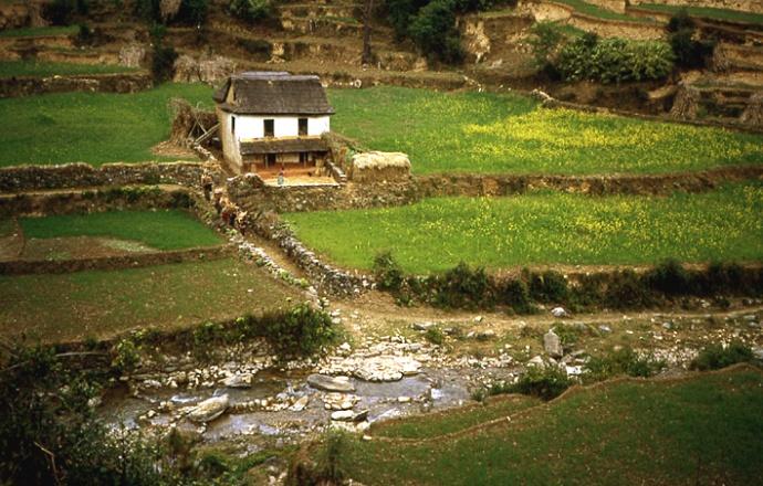 ferme nepal