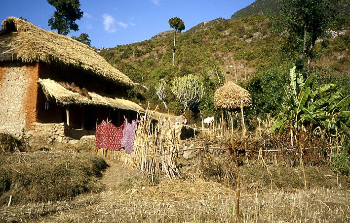 ferme valle de katmandou nepal