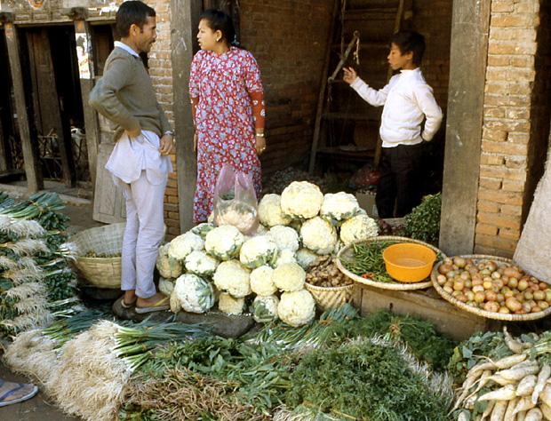 katmandou nepal legumes