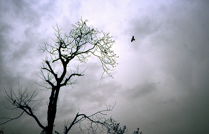 nepal ciel