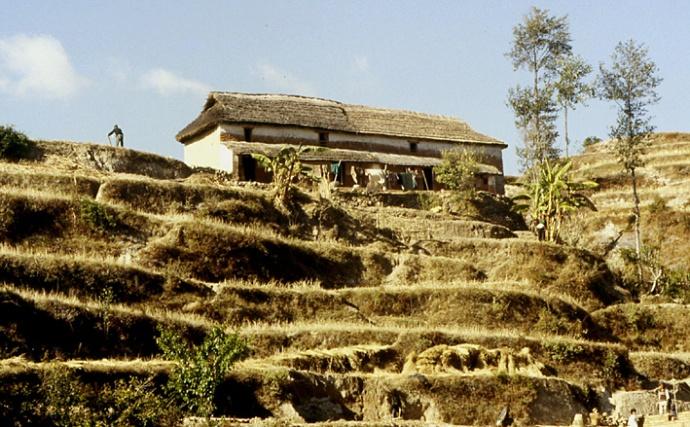 nepal ferme