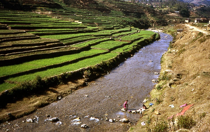 nepal terrasses godawari
