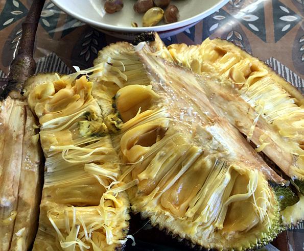 jacquier intérieur du fruit tahiti