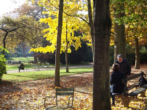 paris jardin du luxembourg automne